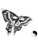 Shaolin Butterfly