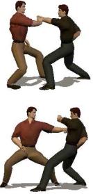 Hidden Fist