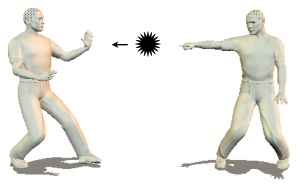 Martial Arts Weapon