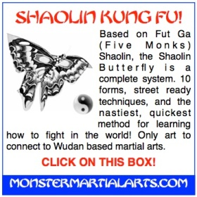 true art of shaolin