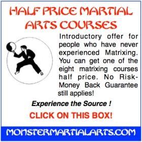 martial art course