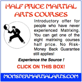 martial art course