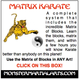 matrixing karate