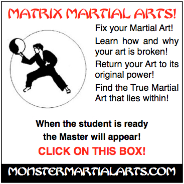 matrix martial arts