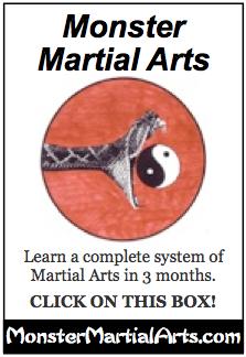 aikido DVD course