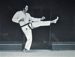 karate kick pic