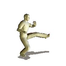 taekwondo back stance