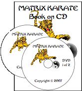 Matrix Karate image