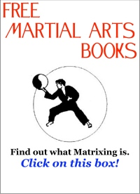 free martial arts book