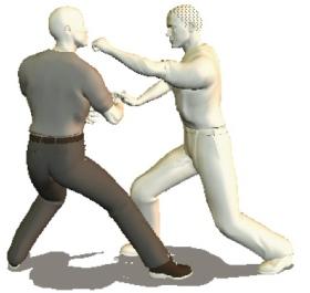 know martial arts