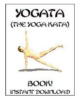 perfect martial arts body book