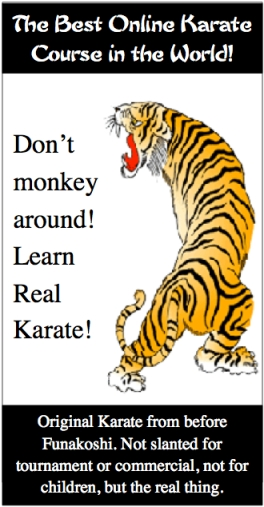 best karate lessons