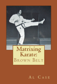 karate style brown belt learn