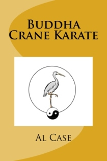chinese hand karate martial art