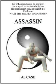 martial arts novel