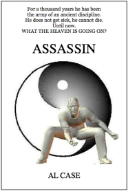 martial arts novel