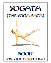 the yoga kata book