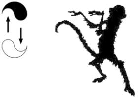 monkey kung fu